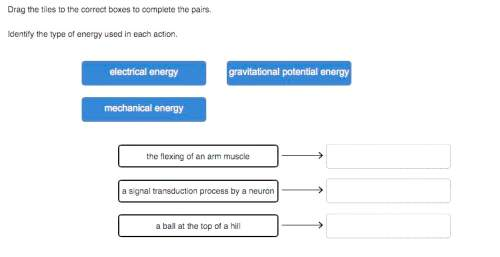 Identify the type of energy used in each action. the flexing of an arm muscle: a signal transducti