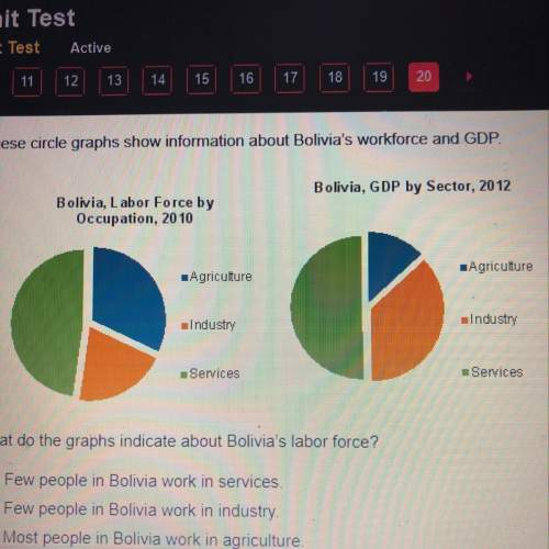 What do the graphs indicate about bolivia's labor force