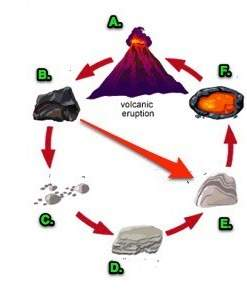 Which letter in the rock cycle diagram represents sedimentary rock? a) a. b) b. c) d. d) e.