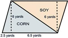 Afarmer has decided to divide his land area in half in order to plant soy and corn. calculate the ar
