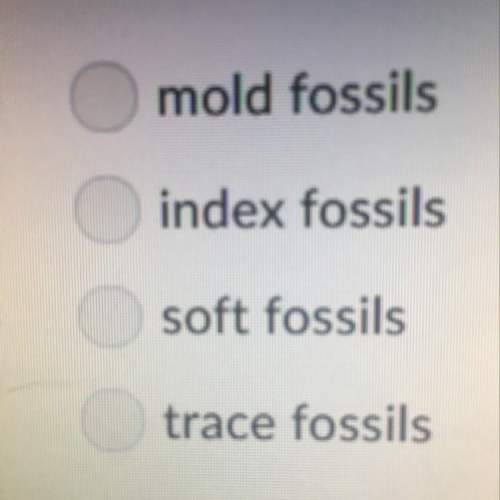 What are fossils of organisms that existed over a wide area but only for a limited time period calle