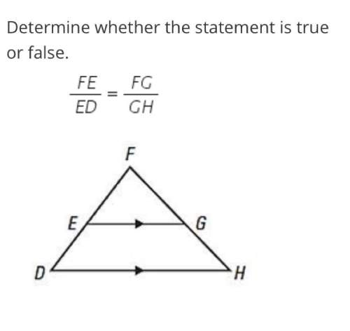 Determine whether the statement is true or false