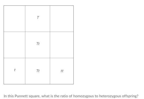 Ihate punnet squares and have no clue how to do them me!