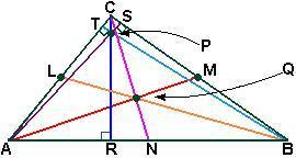 Lolol name the following segment or point. given: l, m, n are midpoints centroid of triangle abc p