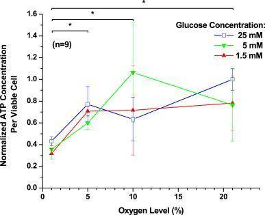 Researchers studied the relationship between glucose concentration, oxygen level, and ATP production