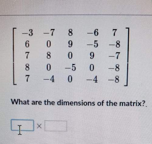 What are the dimensions of the matrix? . i need pls