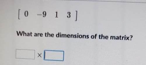 What are the dimensions of the matrix? 