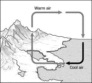 In figure 15-1, cool air is more dense and forces up air.