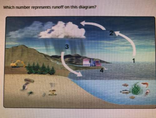 Which number represents runoff in this diagram