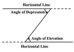From the top of a tree a bird looks down on a field mouse at an angle of depression of 50°. if the f
